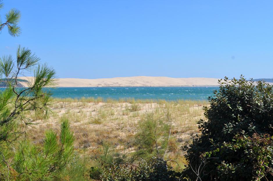 Au détour d'un chemin, la dune