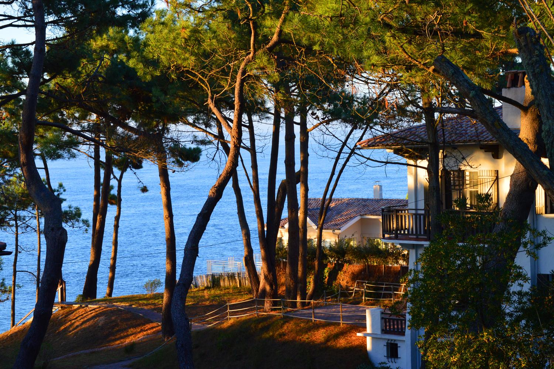 magnifique vue sur le bassin d 39 arcachon depuis la corniche. Black Bedroom Furniture Sets. Home Design Ideas