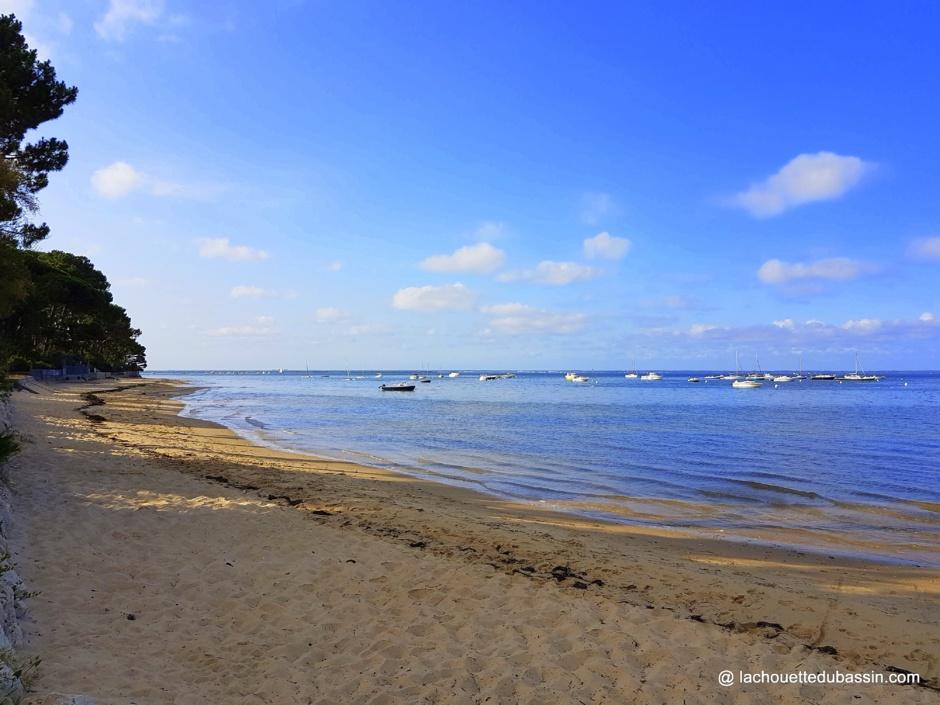 Balade sur la plage du Bassin d' Arcachon en hiver