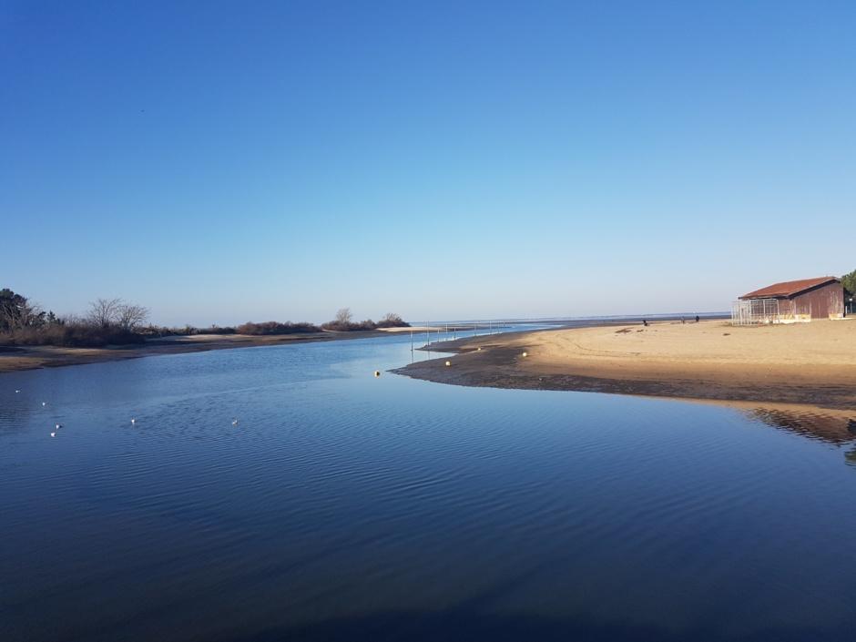 Port de la Hume à Gujan-Mestras