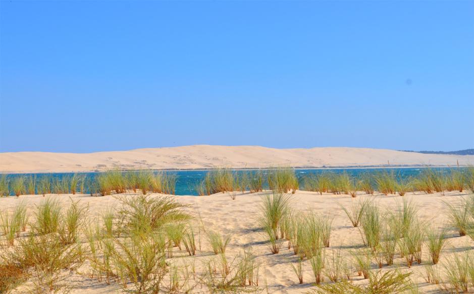 Vue sur la dune depuis la pointe du Cap-Ferret