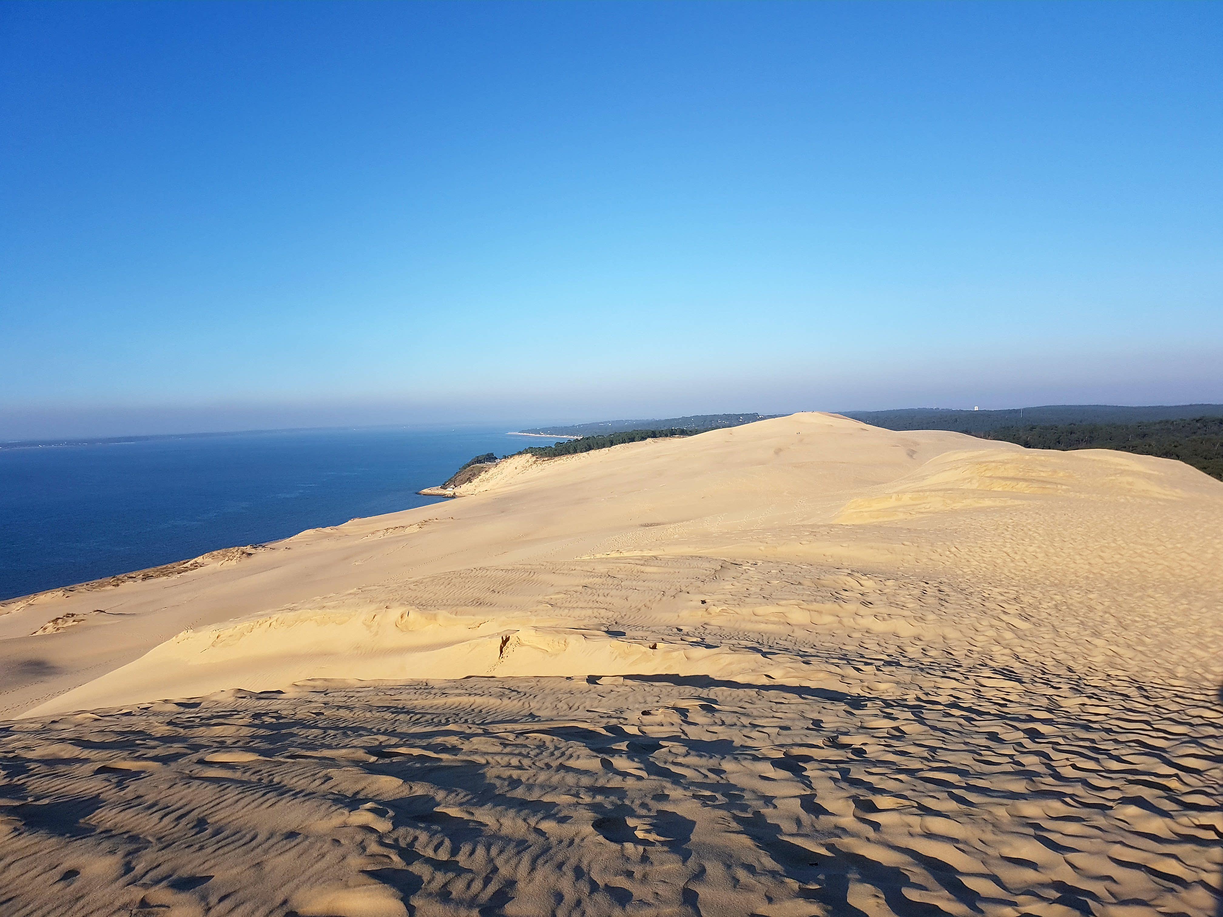 Dune du Pilat 2.9 km de longueur