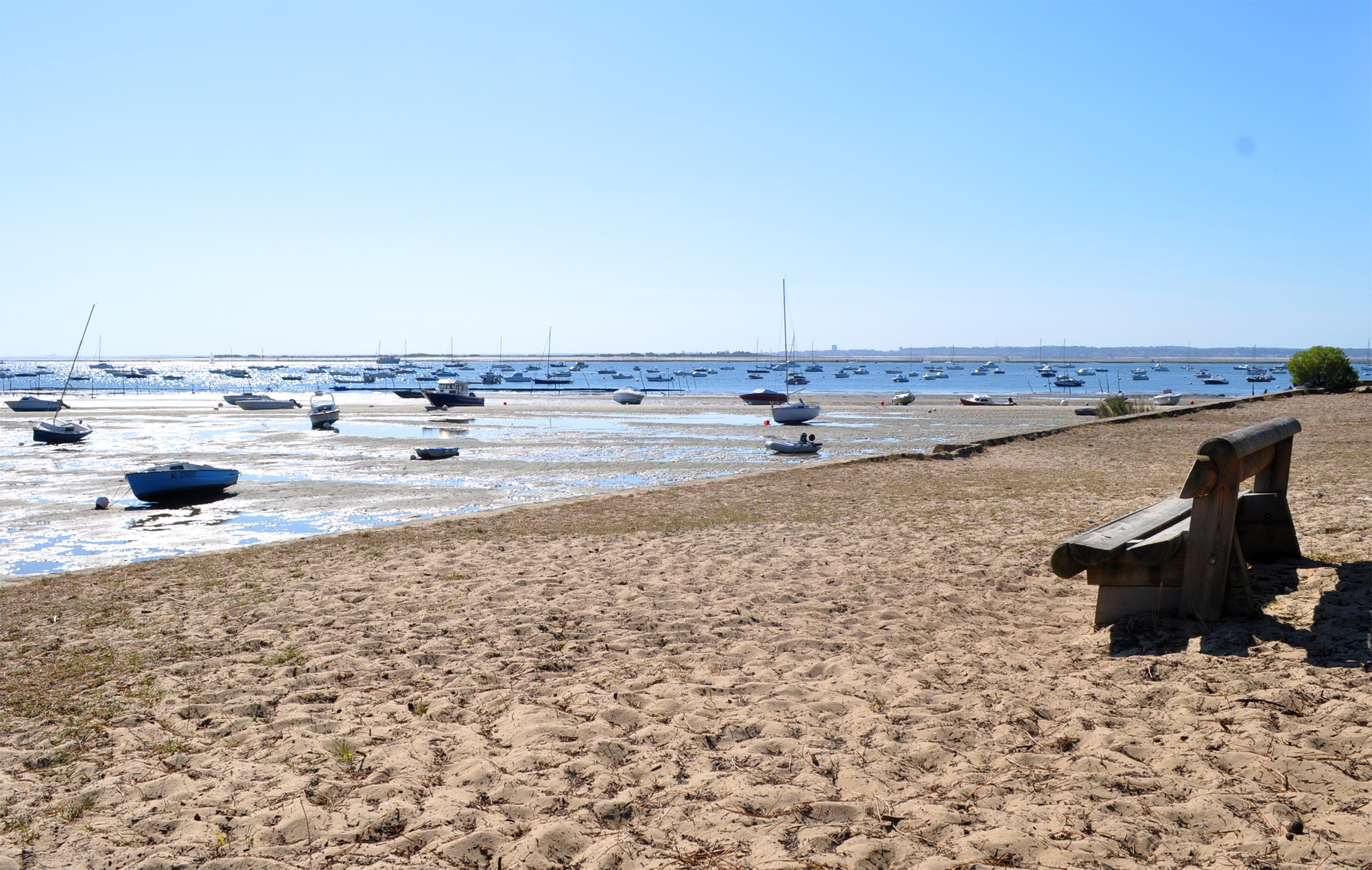 Pointe au chevaux et spectacle du Bassin d' Arcachon