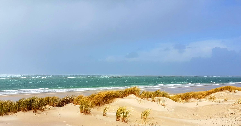 Océan Atlantique et lagune