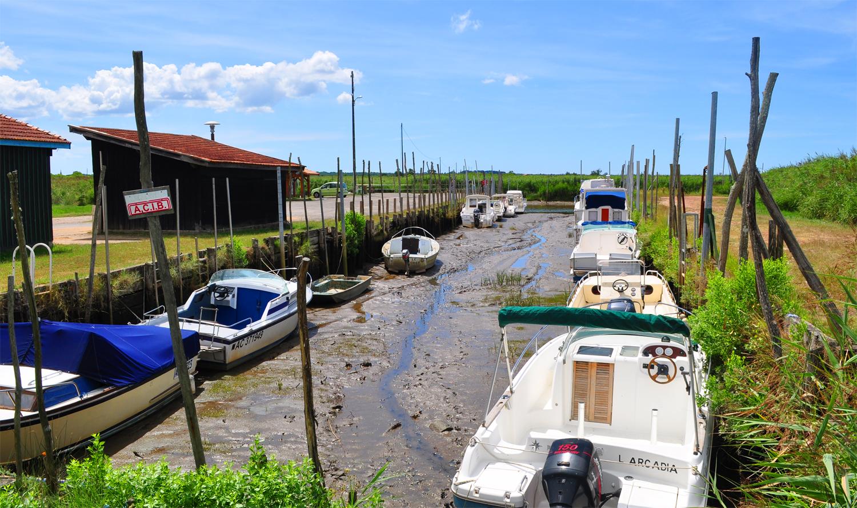 Port aux tuiles à Biganos - marée basse