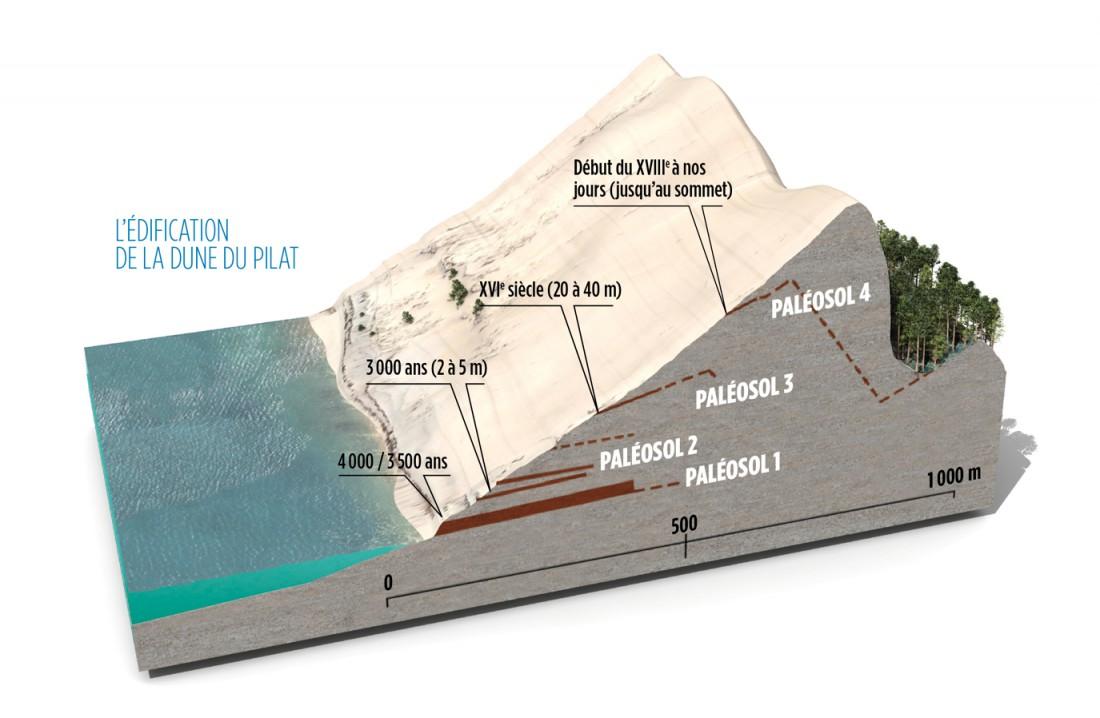 Voir des paléosols et remonter l'histoire de la Dune du Pilat