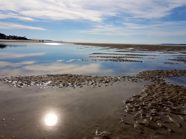 Le Bassin d'Arcachon vu de chouette
