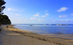 Balade sur les plages du Bassin d' Arcachon en hiver