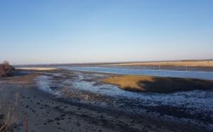 Vue du Bassin depuis les près salés