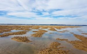 Banc de sable de Pereire à marée montante