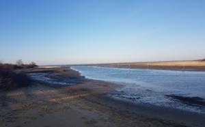 Tour d'horizon au port de Gujan-Mestras