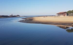 Calme hivernal au port de la Hume à Gujan-Mestras