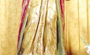 Saint Yves dans l'église d'Audenge guérit les malades