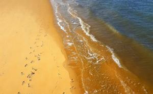 Longue plage à Arcachon