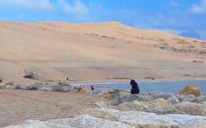 Arrivée des touristes sur le bassin : un de nos meilleurs système de surveillance mis en place
