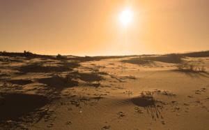 Quand le bassin d' Arcachon ressemble plus à mars qu'à janvier